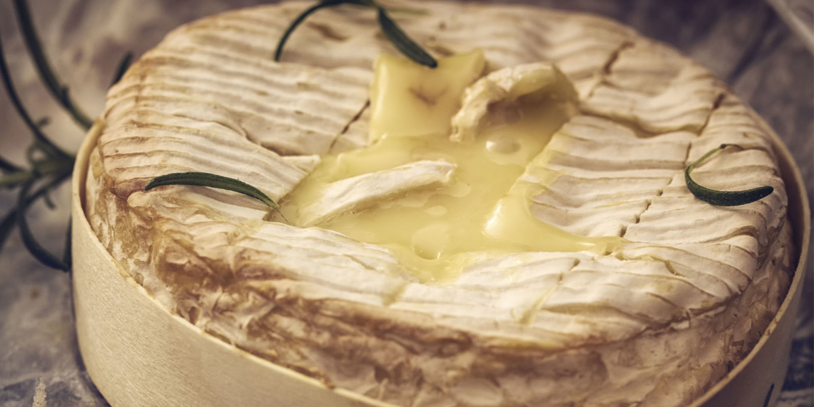 Cheese Has The Same Effect On Your Brain As Heroin, Study Finally Confirms