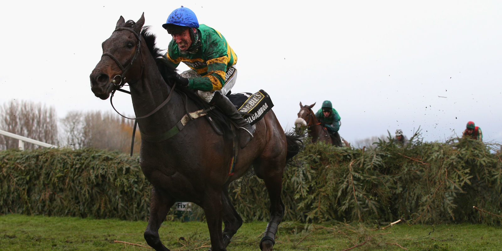 How To Pick A Grand National Winner - 8 Secrets to Betting ...